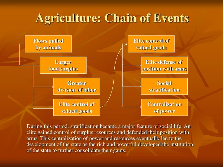Agriculture: Chain of Events