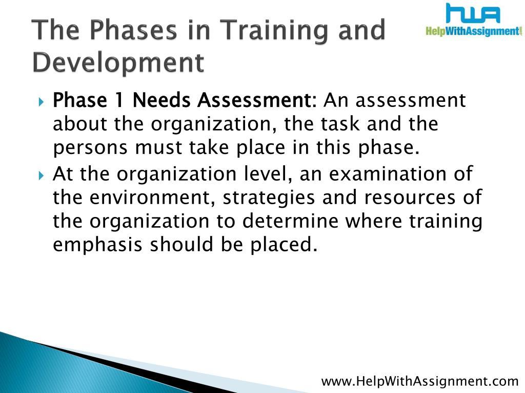 The Phases in Training and Development