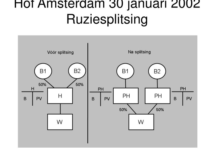 Hof Amsterdam 30 januari 2002