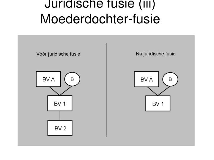 Juridische fusie (iii)