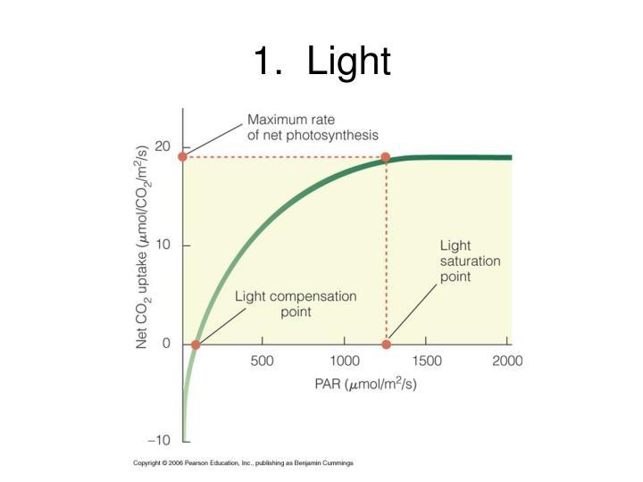 1.  Light