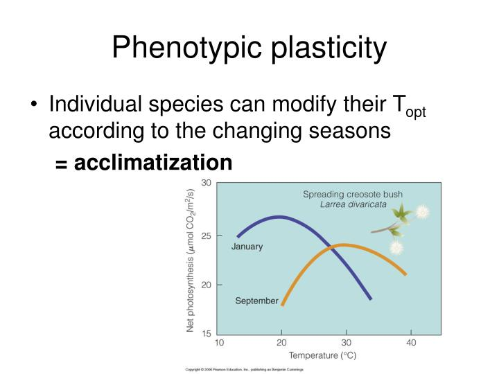 Phenotypic plasticity