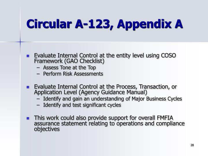 Circular A-123, Appendix A