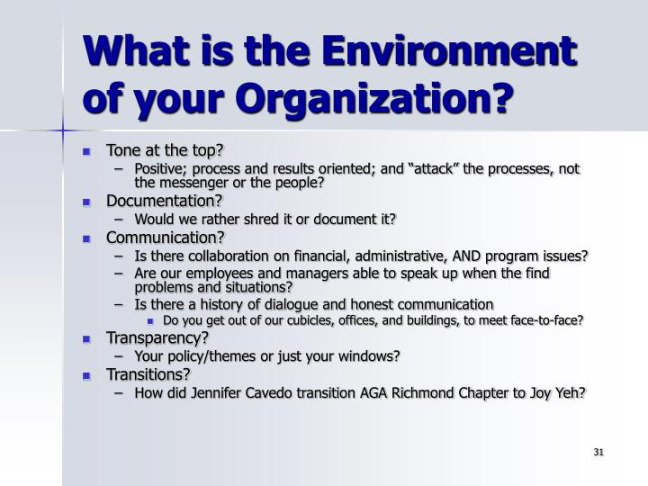 What is the Environment of your Organization?