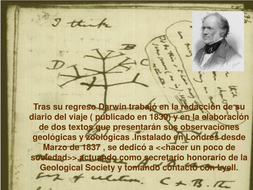 Tras su regreso Darwin trabajó en la redacción de su diario del viaje ( publicado en 1839) y en la elaboración de dos textos que presentarán sus observaciones  geológicas y zoológicas .Instalado en Londres desde Marzo de 1837 , se dedicó a <<hacer un poco de sociedad>>,actuando como secretario honorario de la Geological Society y tomando contacto con Lyell.
