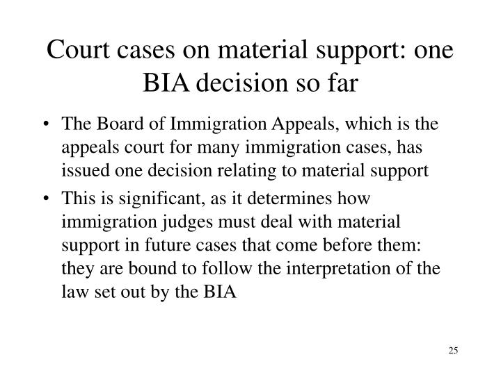Court cases on material support: one BIA decision so far