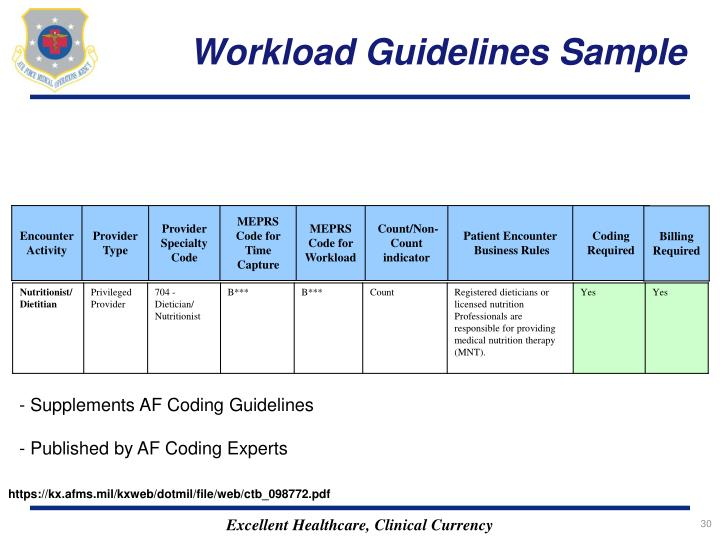 Workload Guidelines Sample