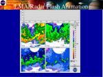lma radar flash animation