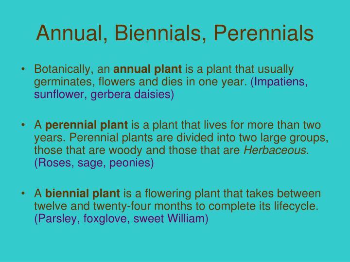 Annual, Biennials, Perennials