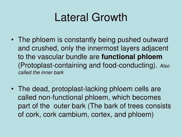 Lateral Growth