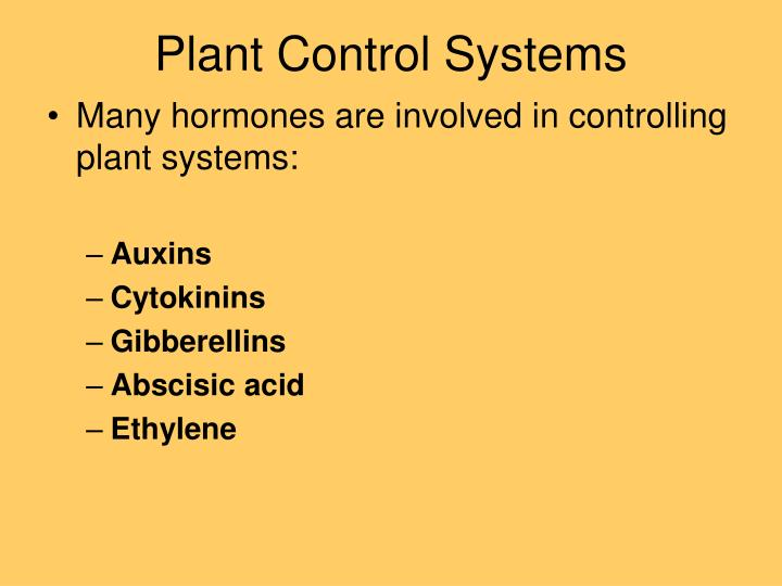Plant Control Systems