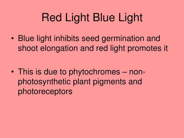Red Light Blue Light
