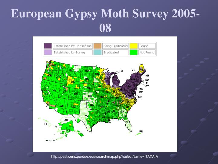 European Gypsy Moth Survey 2005-08