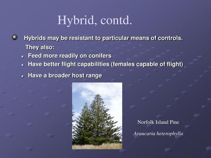 Hybrid, contd.