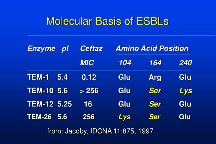 Molecular Basis of ESBLs