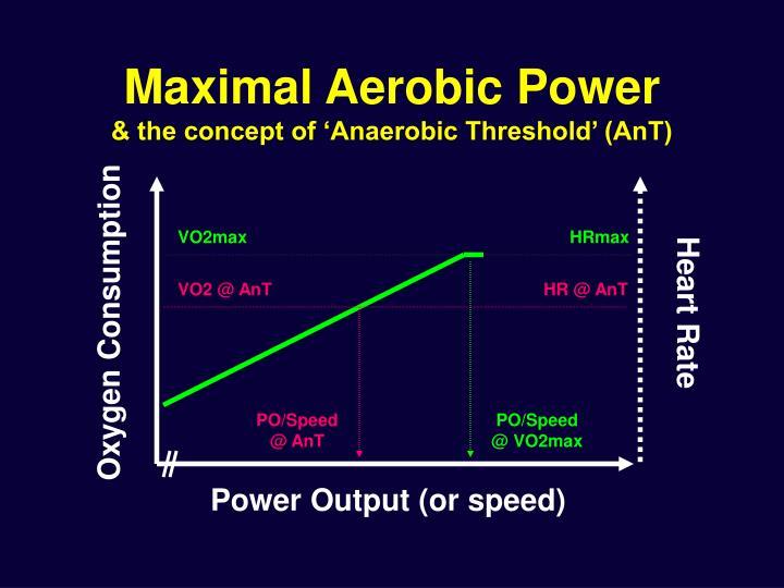 Maximal Aerobic Power