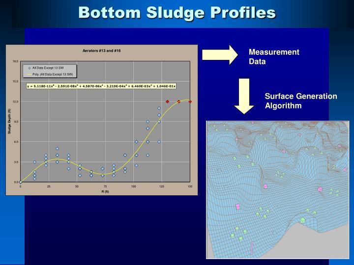 Bottom Sludge Profiles
