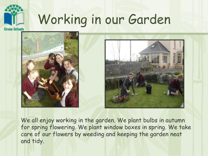 Working in our Garden