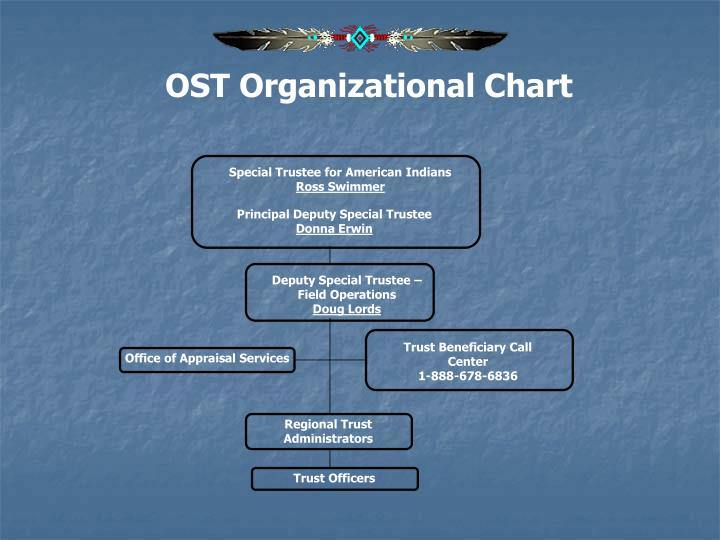 OST Organizational Chart