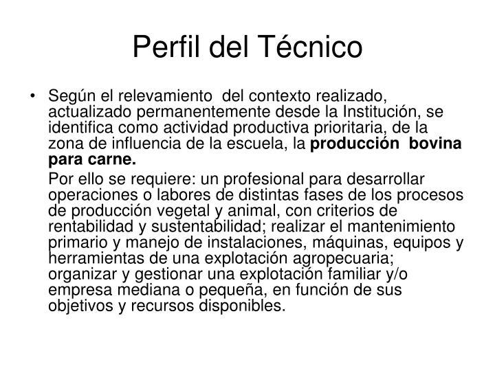 Perfil del Técnico