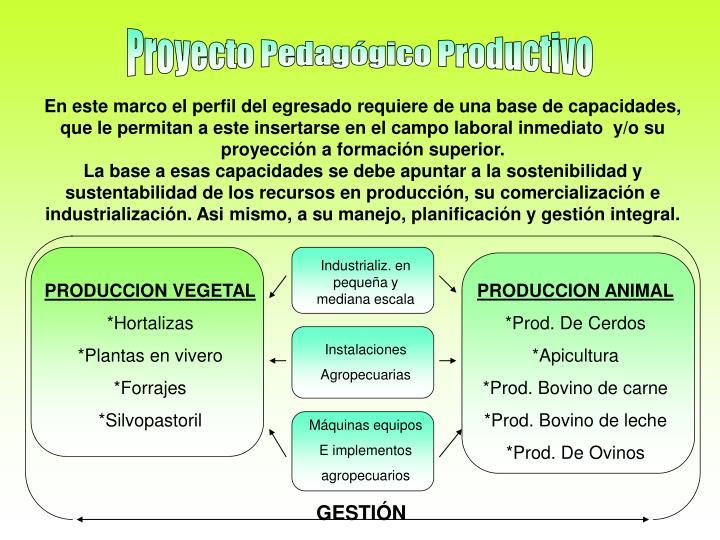 En este marco el perfil del egresado requiere de una base de capacidades, que le permitan a este insertarse en el campo laboral inmediato  y/o su proyección a formación superior.