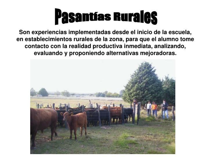 Pasantías Rurales