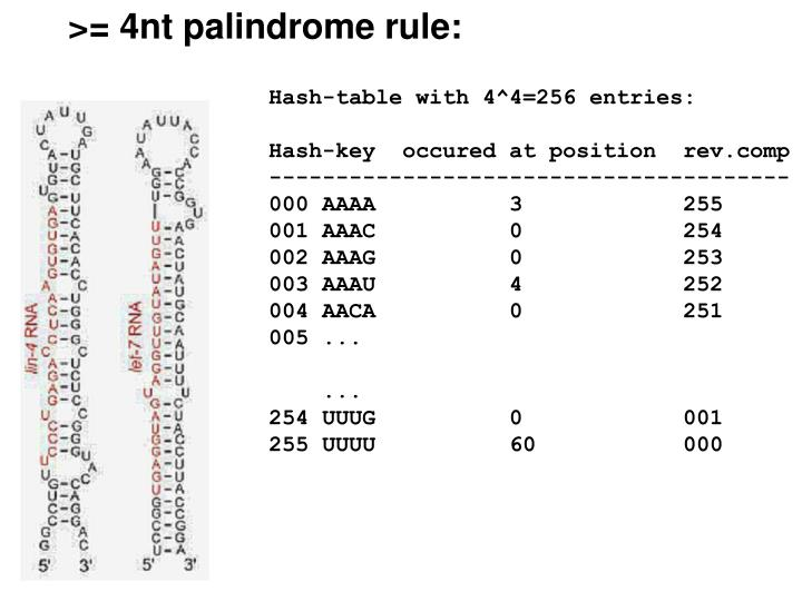 >= 4nt palindrome rule: