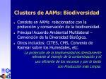 clusters de aam s biodiversidad