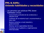 p m l aa ms uniendo habilidades y necesidades1