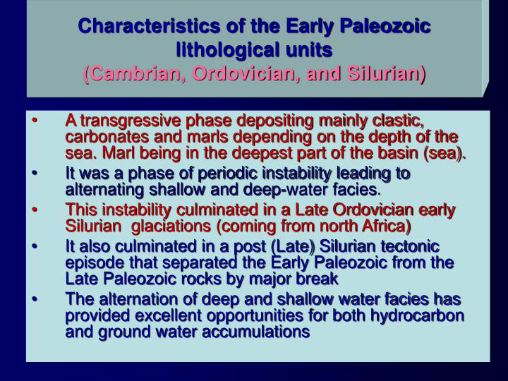 Characteristics of the Early Paleozoic lithological units