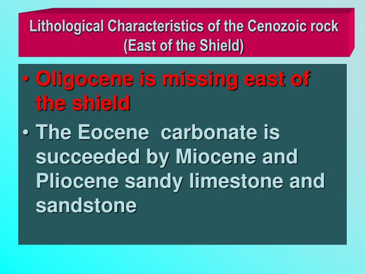Lithological Characteristics of the Cenozoic rock