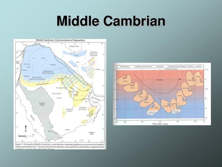 Middle Cambrian