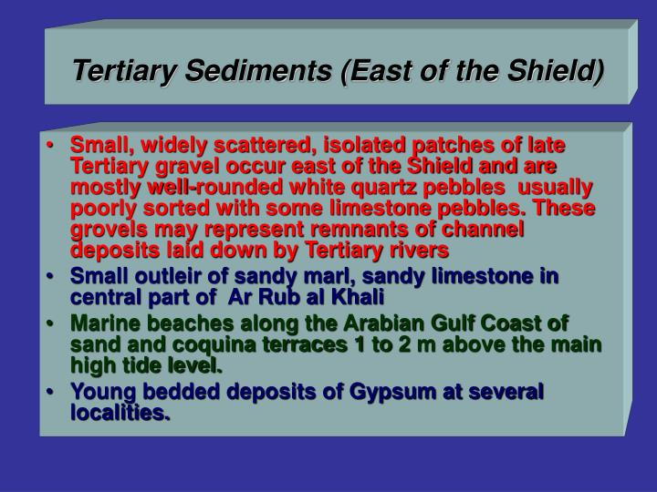 Tertiary Sediments (East of the Shield)