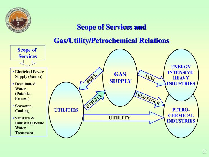Scope of Services and