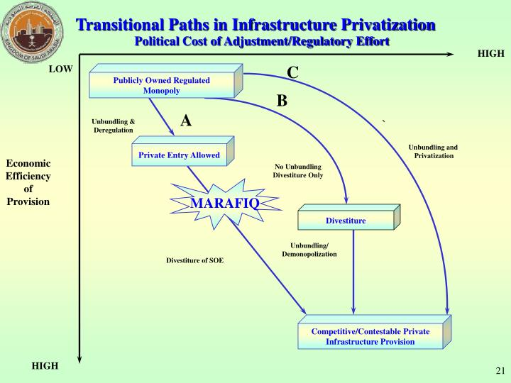 Transitional Paths in Infrastructure Privatization