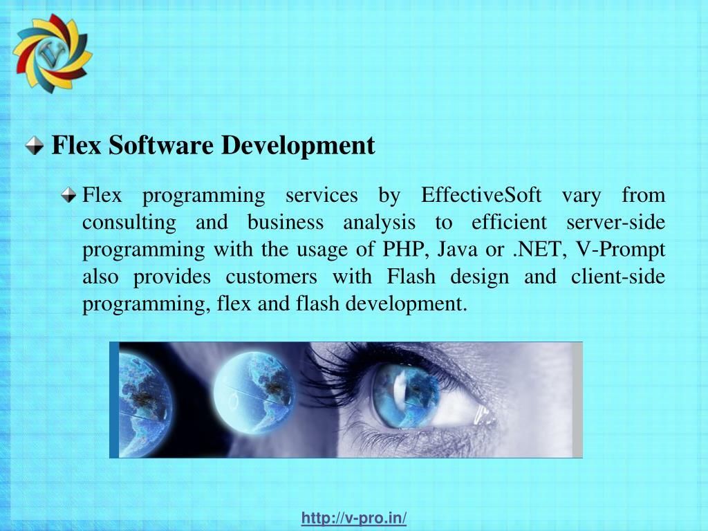 Flex Software Development