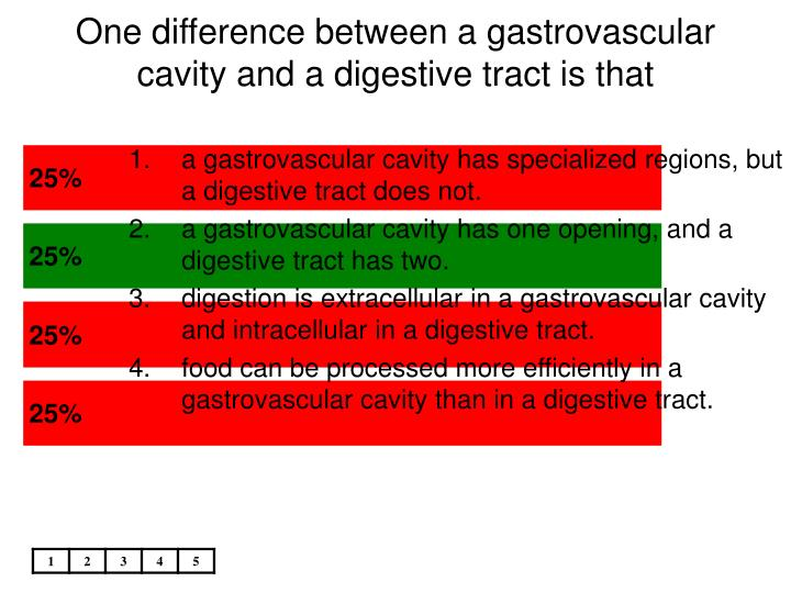 One difference between a gastrovascular cavity and a digestive tract is that