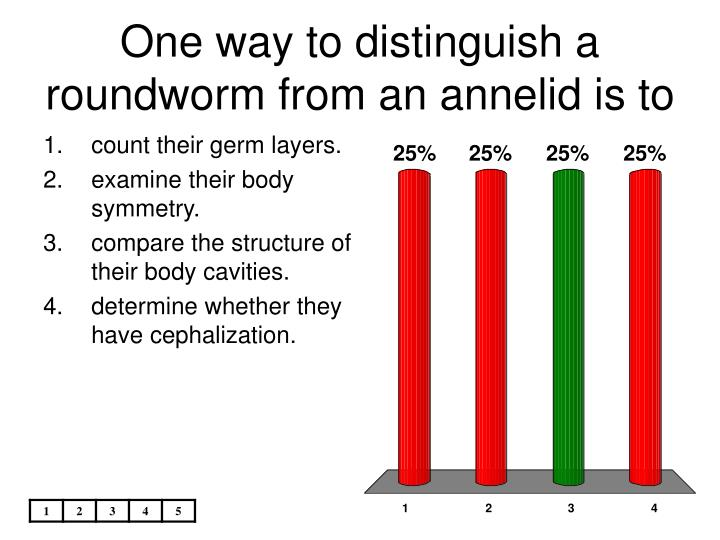 One way to distinguish a roundworm from an annelid is to
