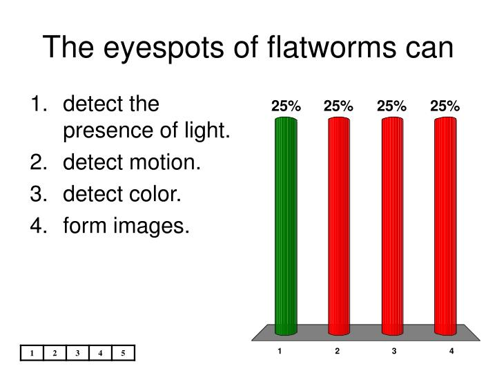 The eyespots of flatworms can