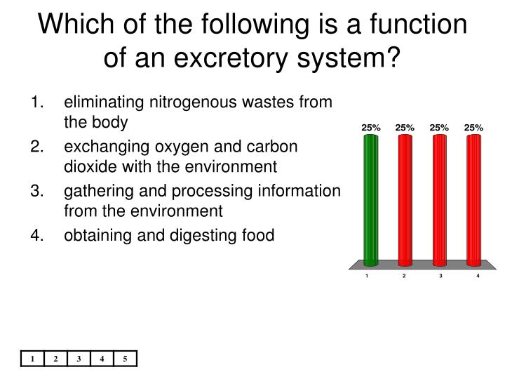 Which of the following is a function of an excretory system?
