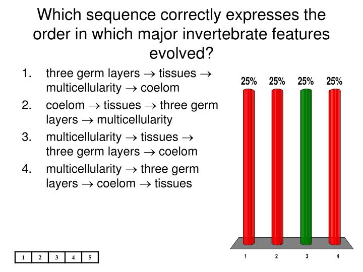 Which sequence correctly expresses the order in which major invertebrate features evolved?
