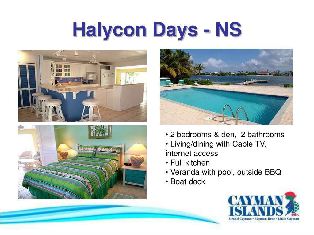 Halycon Days - NS