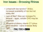 iron issues browsing rhinos11