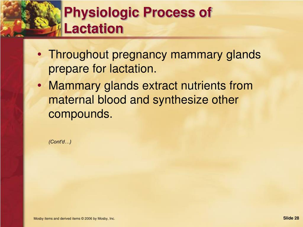 Physiologic Process of Lactation