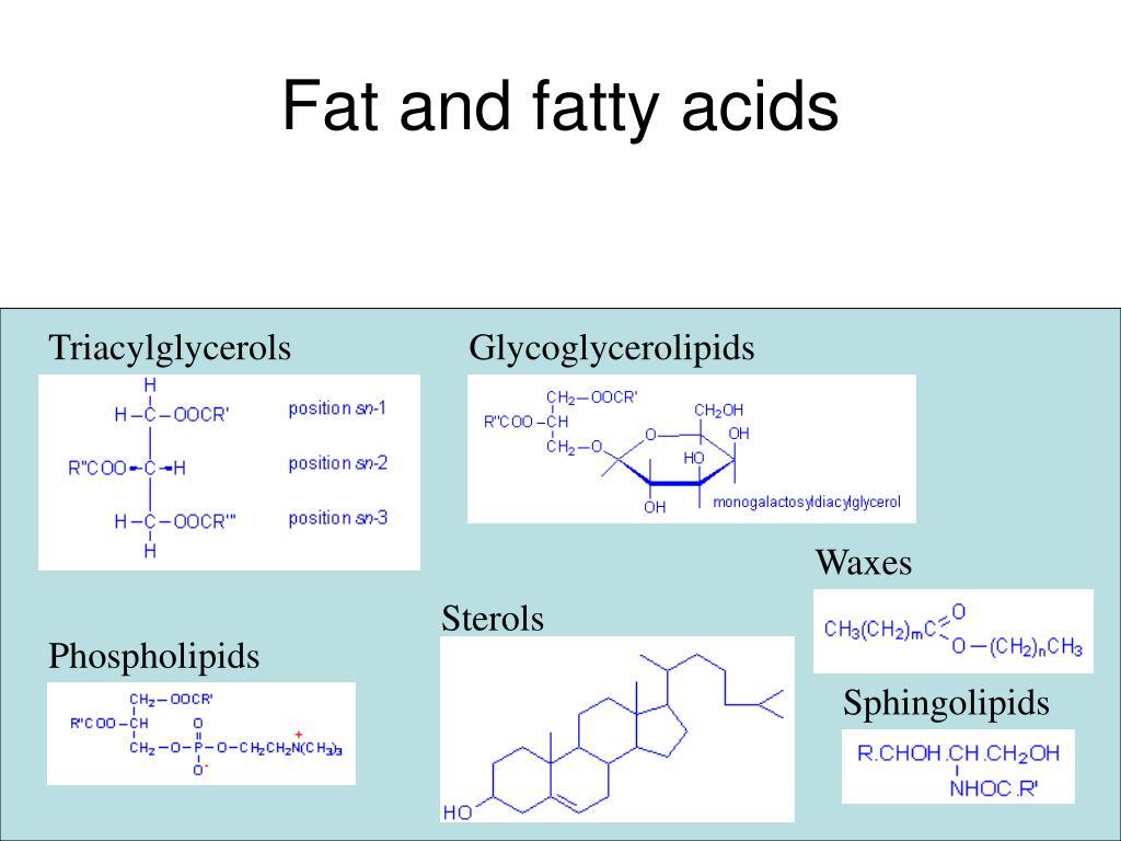 Fat and fatty acids