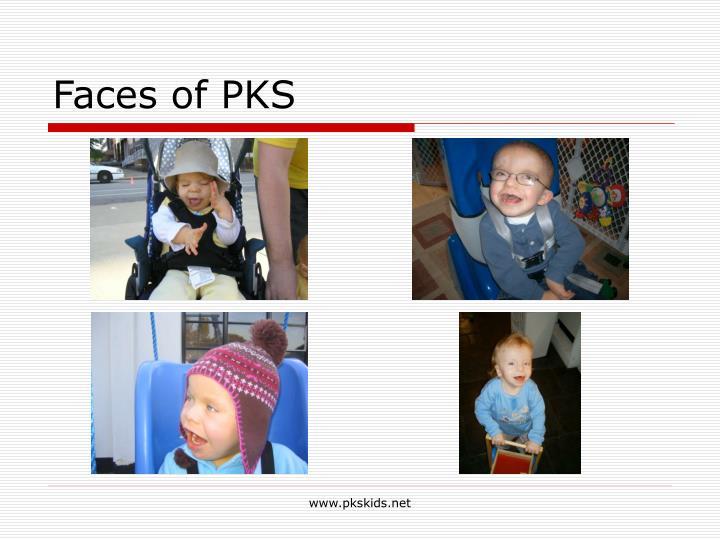 Faces of PKS