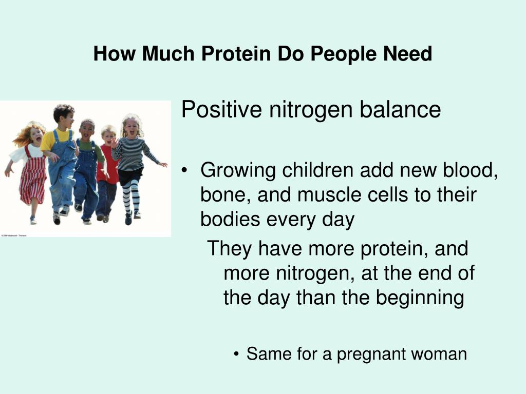 How Much Protein Do People Need