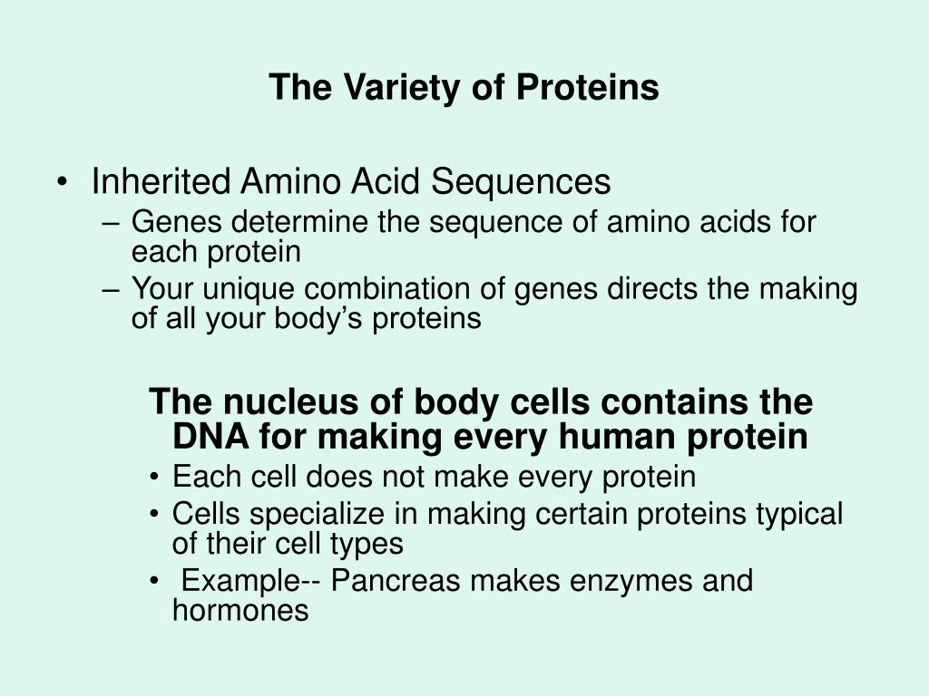 The Variety of Proteins