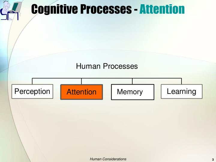 Cognitive processes attention