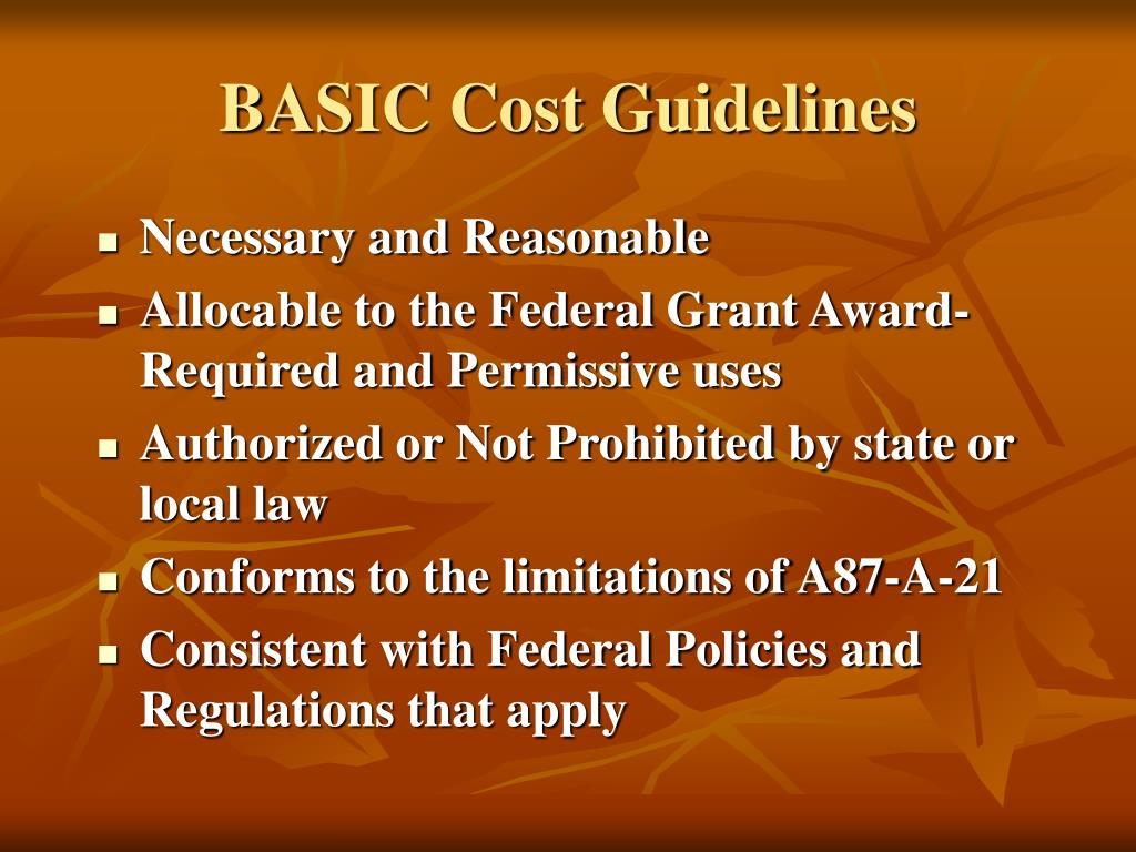 BASIC Cost Guidelines